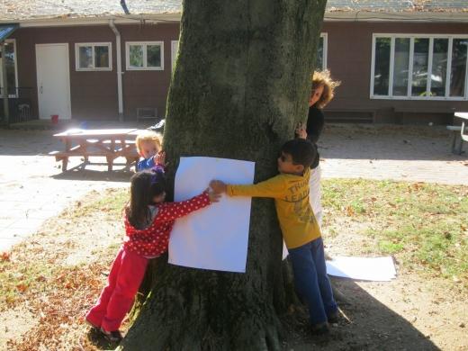 Westbury Friends School in Westbury City, New York, United States - #4 Photo of Point of interest, Establishment, School
