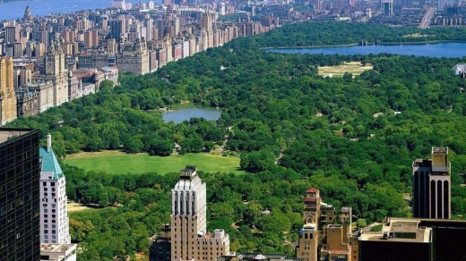 Photo by dbac for Central Park