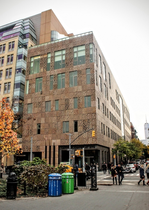 Photo by Alex Hemsley for NYU Global Center