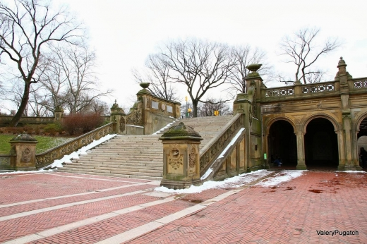 Central Park in New York City, New York, United States - #4 Photo of Point of interest, Establishment, Park