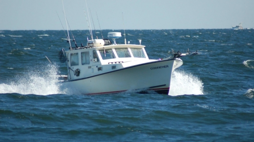 Photo by Codfather Fishing Charters for Codfather Fishing Charters