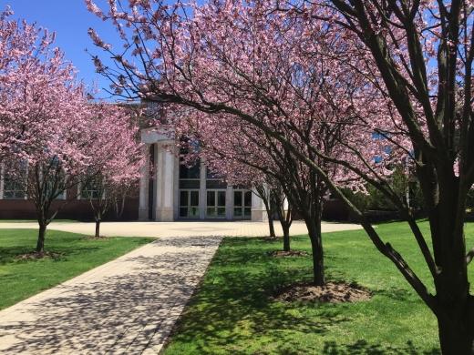 Sh'or Yoshuv Institute Inc in Lawrence City, New York, United States - #2 Photo of Point of interest, Establishment, University