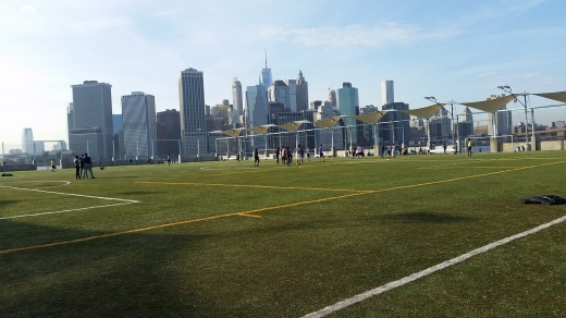 Photo by John Pluchino for Brooklyn Bridge Park Pier 5