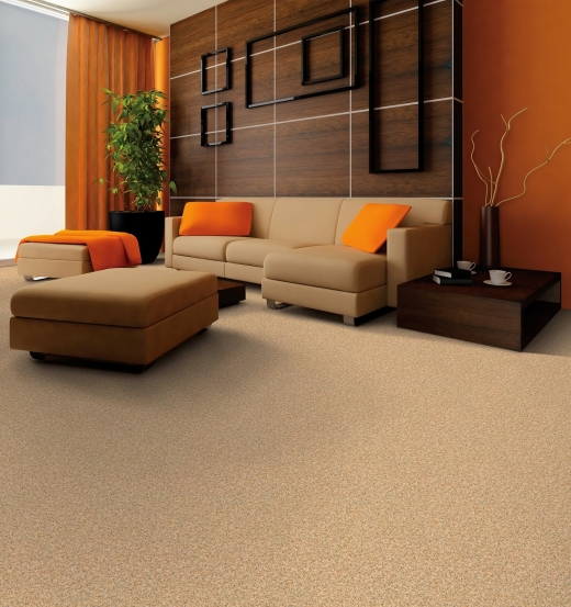 Photo by Carpet Giant of America for Carpet Giant of America