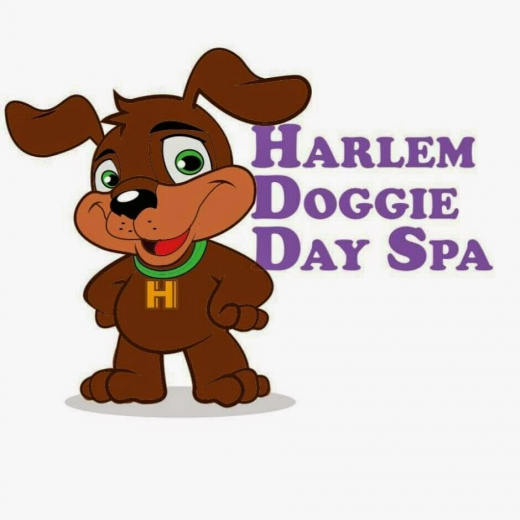 Photo by Harlem Doggie Day Spa for Harlem Doggie Day Spa